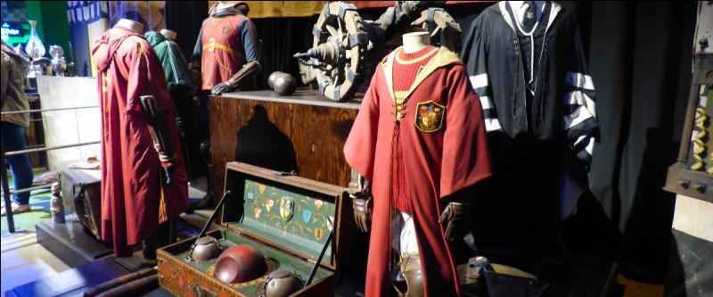 Pour introduire la fameuse salle de simulation de vol sur balai, quelques articles de Quidditch ont été disposés, mais un intrus se cache, lequel ?