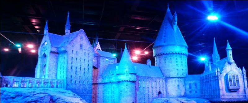 Et le plus fou pour la fin : une reproduction du château, IMMENSE, on le contemple bien vingt minutes… Quel est l'échelle, selon vous ?