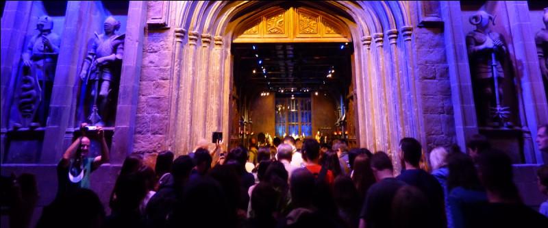 Harry, Ron et Hermione nous accueillent en vidéo, puis celle-ci s'arrête, le rideau se lève et les véritables portes apparaissent : HYSTÉRIE TOTALE ! !