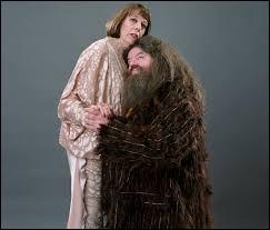 Qu'est-ce que Mme Maxime et Hagrid ont en commun ?(uniquement dans les livres)