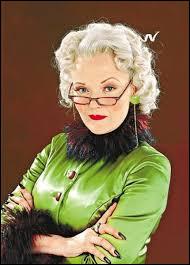 Comment s'appelle le stylo qu'utilise Rita Skeeter ?