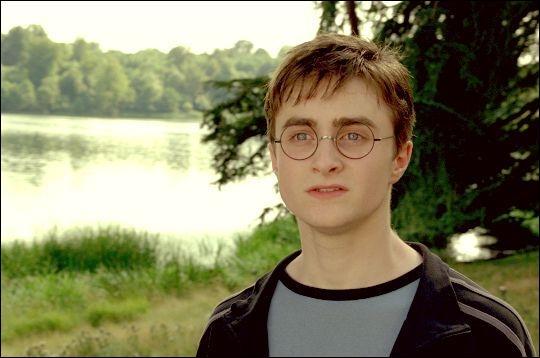 C'est un sorcier, il est le meilleur ami de Ronald Weasley :