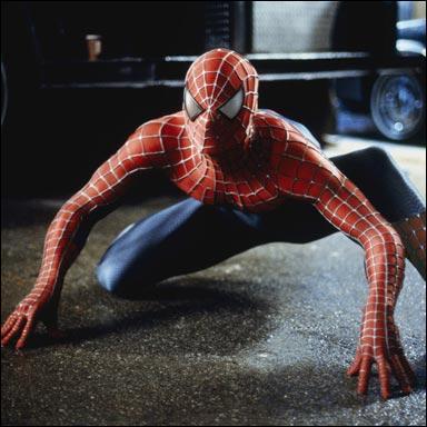 Il est orphelin, il s'est fait mordre par une araignée radioactive qui lui a donné de super pouvoir :