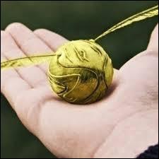 Qui attrape le Vif d'or durant le 1er match de Harry ?