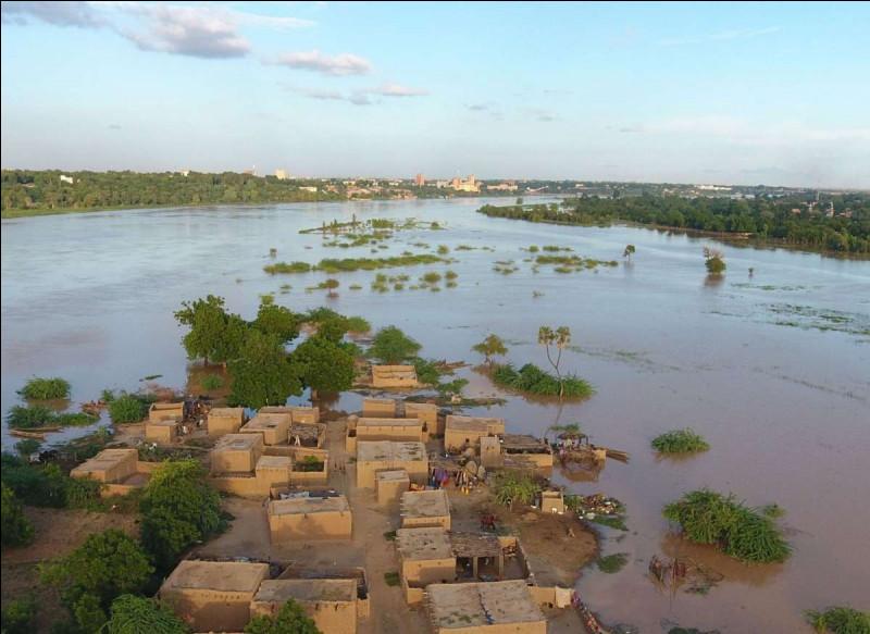 Dans quel pays africain, le fleuve Niger prend-il sa source ?