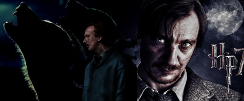 TOP 11 : Remus Lupin (89 pts)Pourquoi Dumbledore a-t-il nommé Lupin préfet ?
