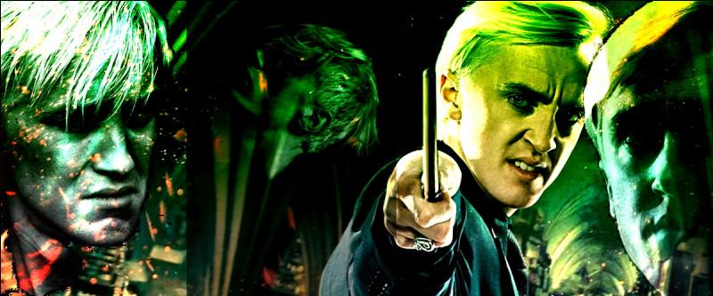 TOP 9 : Drago Malefoy (123 pts)A quelle tâche Drago est-il assigné lorsque Voldemort fait du manoir des Malefoy son quartier général ?