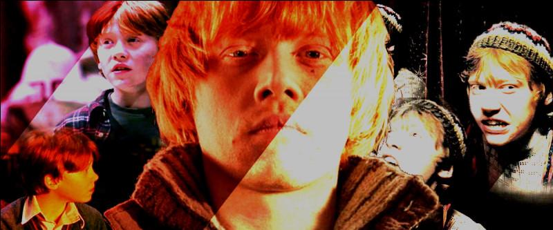 TOP 6 : Ron Weasley (156 pts)Il joue un rôle clé dans la bataille de Poudlard, quelle action est particulièrement bluffante ?