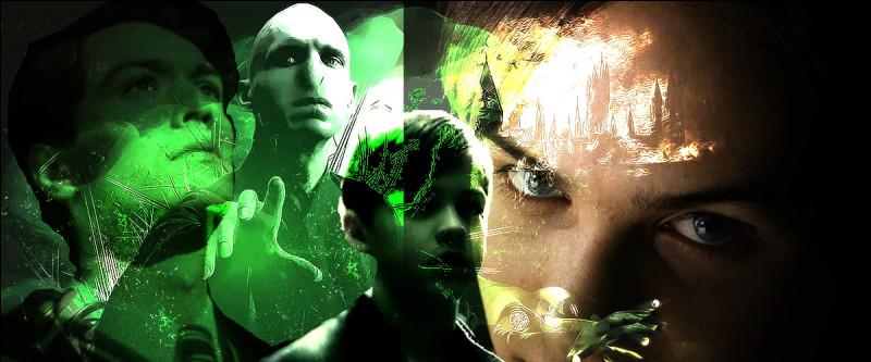 TOP 16 : Voldemort (57 pts)Qu'est-ce qui prouve que réussir à Poudlard ne signifie pas réussir dans la vie ?