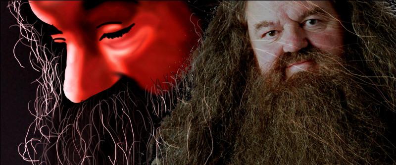 TOP 15 : Hagrid (60 pts)Quelle citation Hagrid aime-t-il bien répéter ?