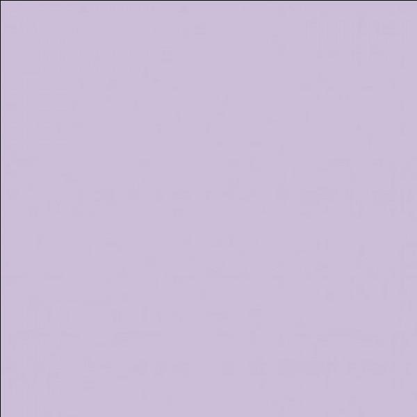 Cette couleur-ci c'est...