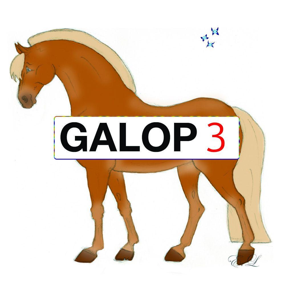 Galop 3
