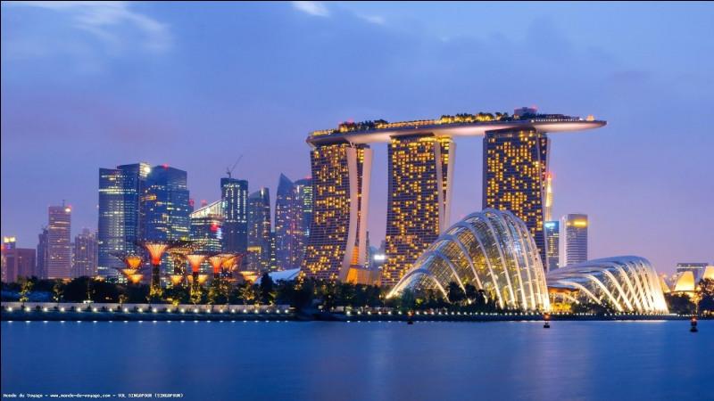 Dans quel pays se situe Singapour ?
