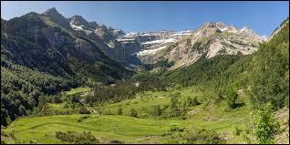 De quelle couleur sont les pétales du Trolle des montagnes ?