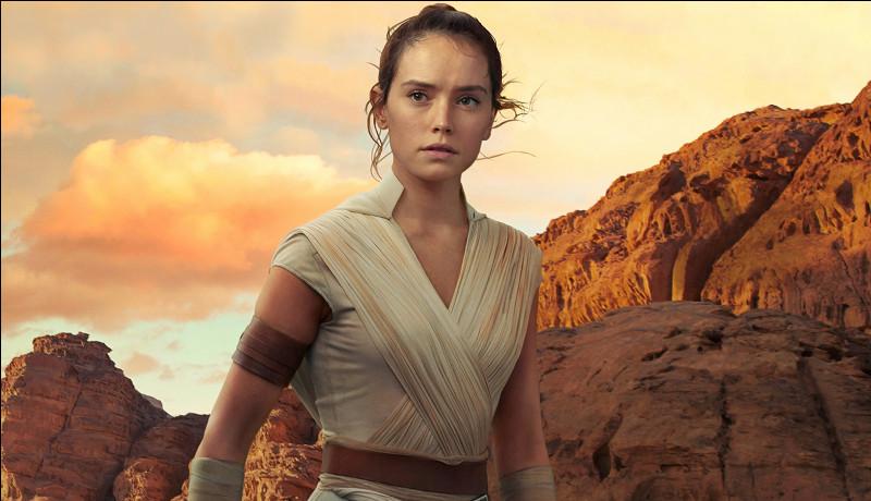 Dans quelle saga pouvez-vous trouver Rey ?