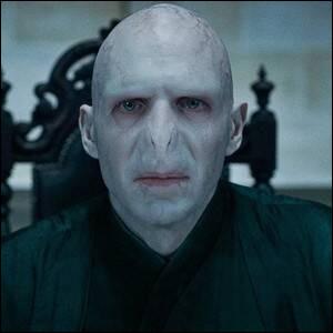 Dans quelle saga pouvez-vous rencontrer Voldemort ?