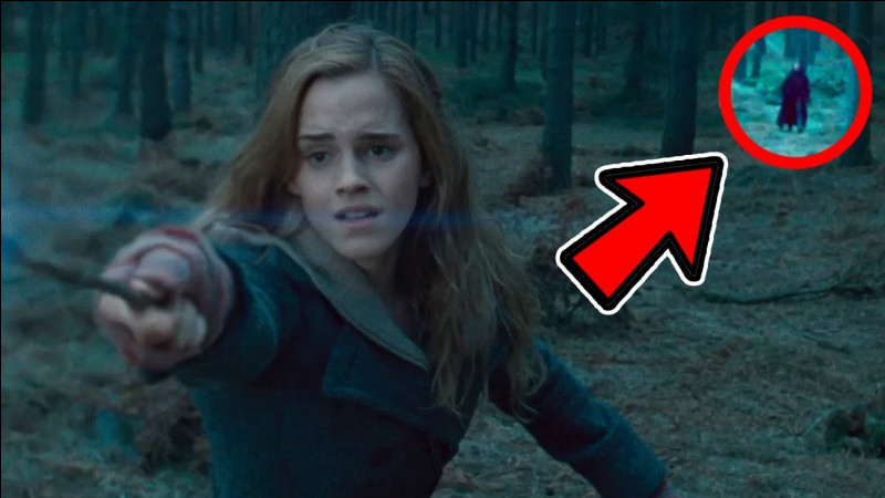 Dans quelle saga se trouve Hermione Granger ?