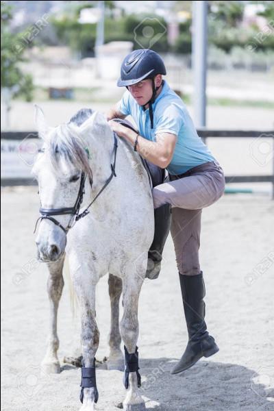 De quel côté faut-il monter à cheval ?