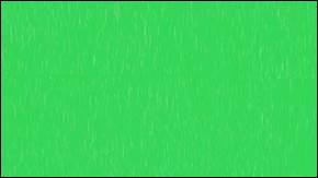 L'image illustrant la question 9 est la seule qui n'a pas servi, désormais. Quelle couleur y est illustrée ?