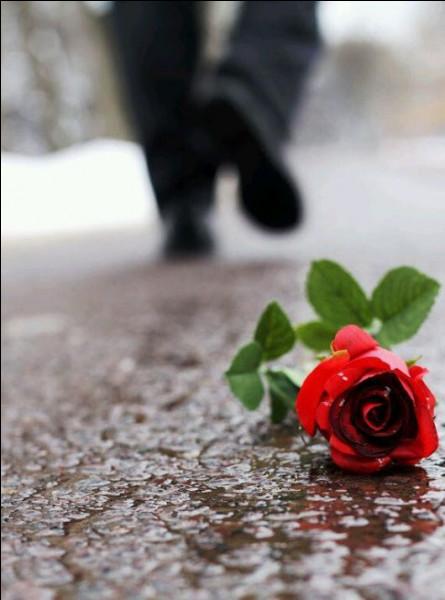 """Qui est l'interprète des paroles """"c'est ainsi par ici que les choses ont changé, que les fleurs ont fané"""" ?"""