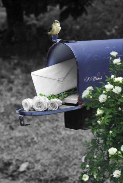 """La Poste a pour origine """"les relais de poste"""" destinés dans un premier temps à distribuer les messages royaux, puis à distribuer ceux des particuliers. Quel roi les a institués ?"""