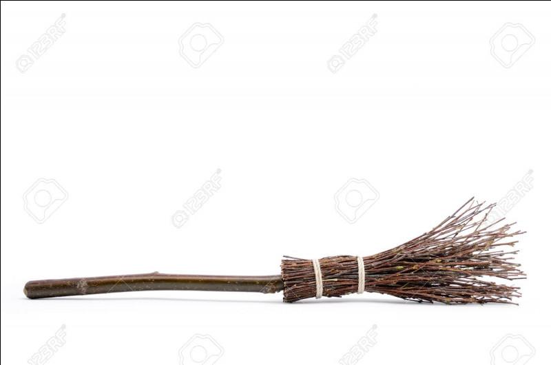 Quel est le numéro de la coupe de quidditch lorsque Harry va la voir avant sa 4e année ?