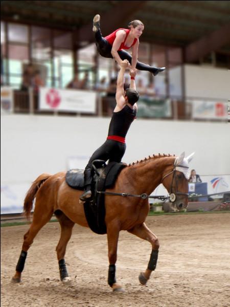 Exécuter des figures sur un cheval au galop, c'est faire de...