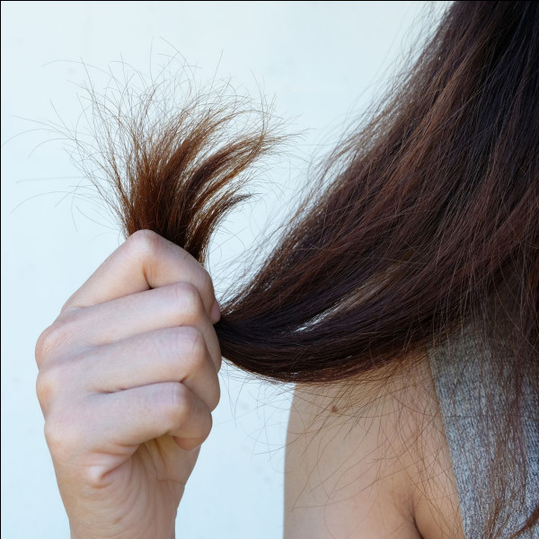 Tu as les cheveux...