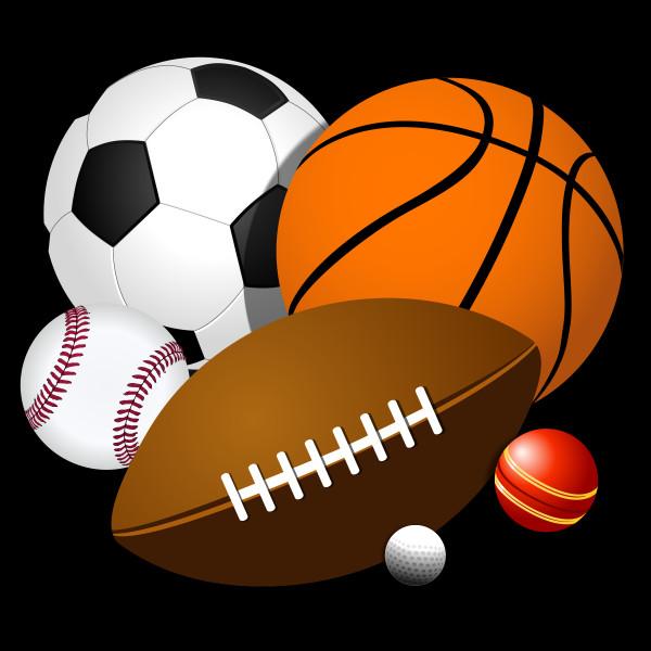 Quel sport aimes-tu faire ?