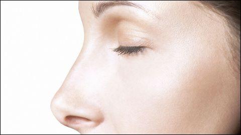 Quelle matière forme la partie antérieure visible du nez ?