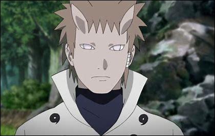 Qui est le frère de l'Ermite Rikudo ?