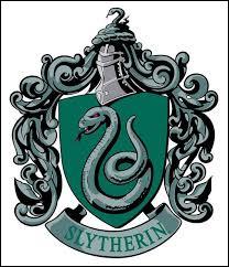 Qui est le directeur de l'équipe de Quidditch de Serpentard dans Harry Potter 2 et 3 ?