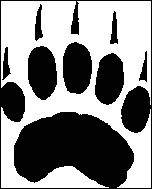 À quel animal correspondent ces empreintes ?