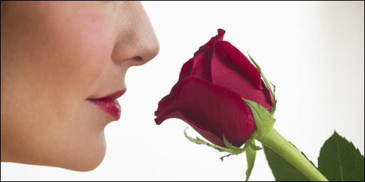 En moyenne, combien d'odeurs un être humain est-il capable de distinguer ?