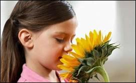 Lequel de ces philosophes des Lumières considère que cultiver l'odorat correspond à refuser d'accéder à un monde civilisé ?