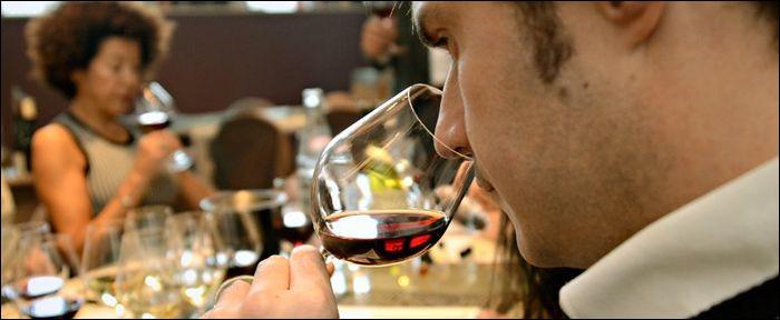 Comment appelle-t-on la science qui a pour étude la connaissance du vin ?