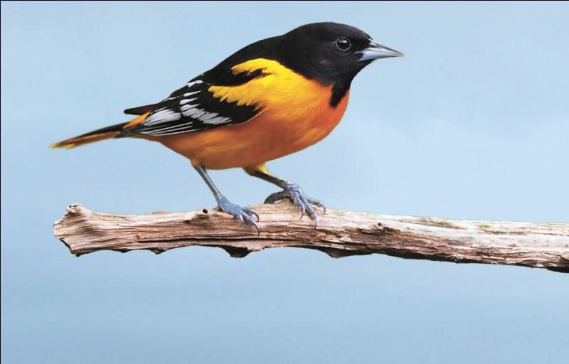 (Tome 6)La formule magique Oppugno sert à faire disparaître des oiseaux.