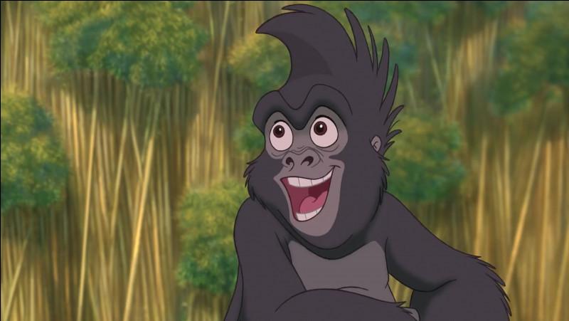 Quel est le nom de ce personnage dans 'Tarzan' ?