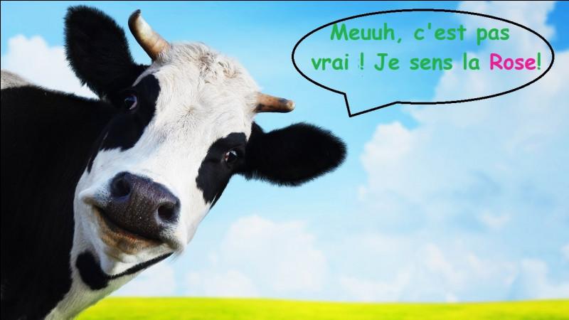 Un agriculteur a déjà payé une amende de 8 000 € car ses voisins se sont plaints de ses vaches qui sentaient mauvais ?