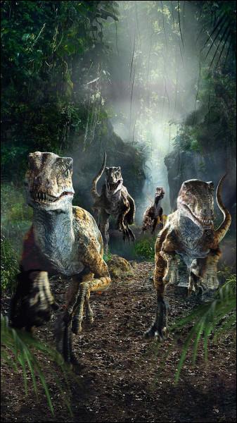 Le vélociraptor ressemble aux dinosaures sur la photo ci-dessus.