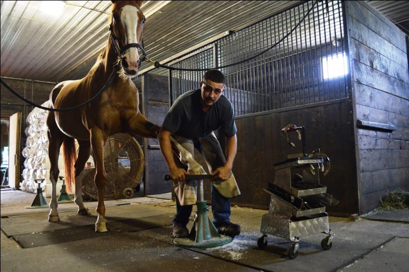 Quant à moi, mon métier est complètement relié aux sabots des chevaux. Mon travail est primordial, car un bon équilibre signifie un sabot en bon état. Je lime et ferre les quatre ongles des chevaux. Je dois être habile de mes mains et doux avec l'animal. Qui suis-je ?