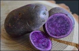 Quelle est cette variété de pomme de terre française avec une peau et une chair qui sont violettes ?