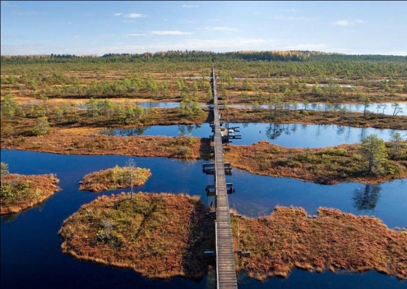 Voici le parc national de Lahemaa, sur la côte nord de l'Estonie. Il se compose de plusieurs baies donnant sur un golfe de l'est de la mer Baltique. Quel est ce golfe ?
