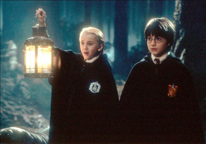 Quel est le nom du premier centaure que Harry rencontre ?