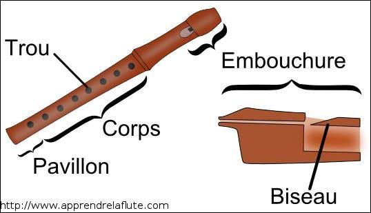 À quelle famille d'instruments appartient la flûte à bec ?