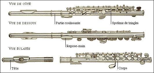 À quelle famille d'instruments appartient la flûte traversière ?