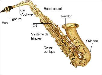 À quelle famille d'instruments appartient le saxophone ?