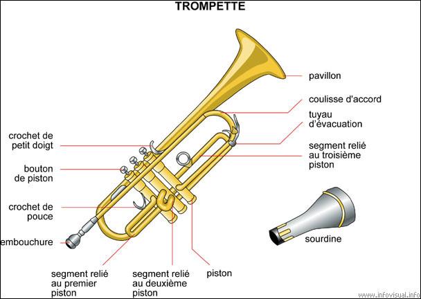 À quelle famille d'instruments appartient la trompette ?