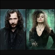 Quel lien y a-t-il entre Bellatrix Lestrange et Sirius Black ?