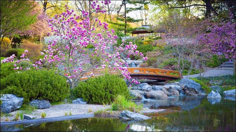 Pour résumer, de quoi se compose essentiellement un jardin japonais ?